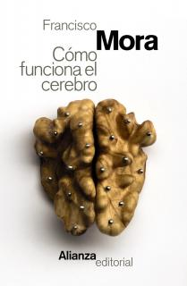 Cómo funciona el cerebro