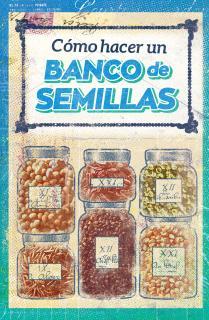 Cómo hacer un banco de semillas
