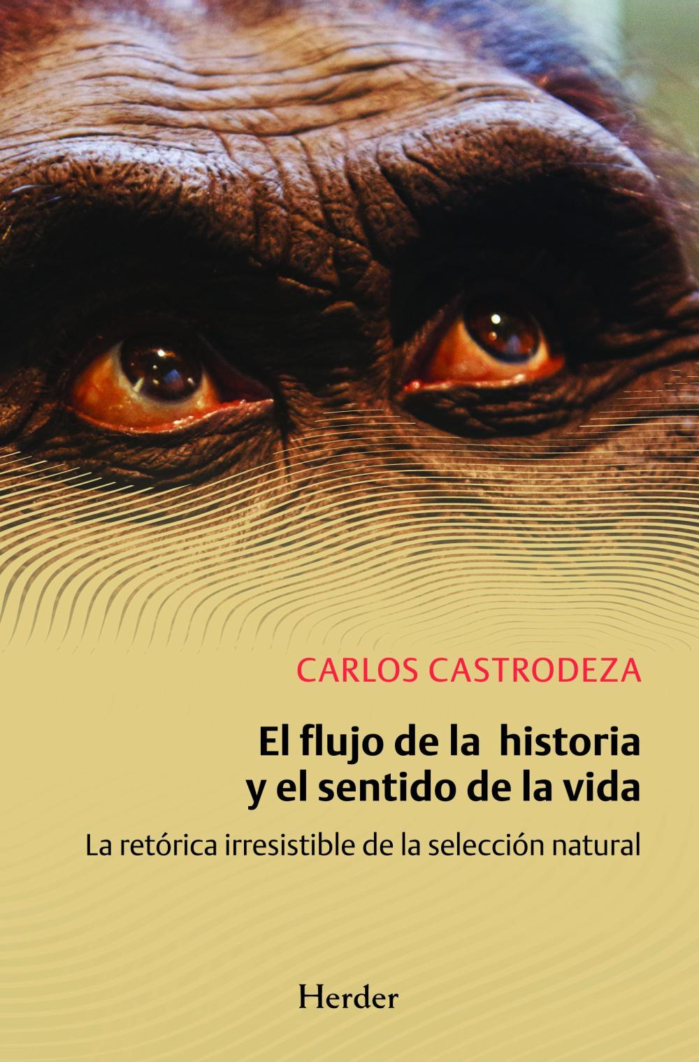 El flujo de la historia y el sentido de la vida
