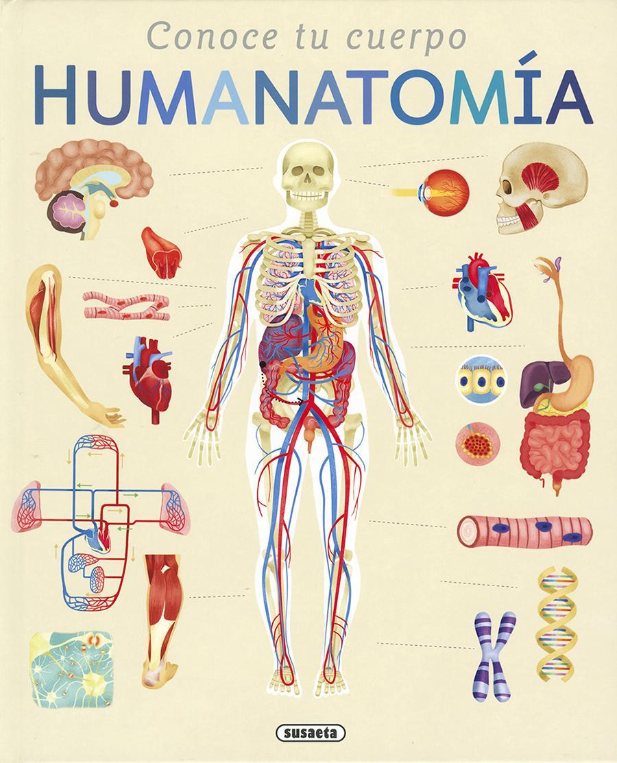 Humanatomía